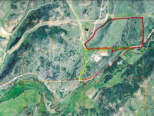 Mountain Acreage Collbran Colorado : Collbran : Mesa County : Colorado