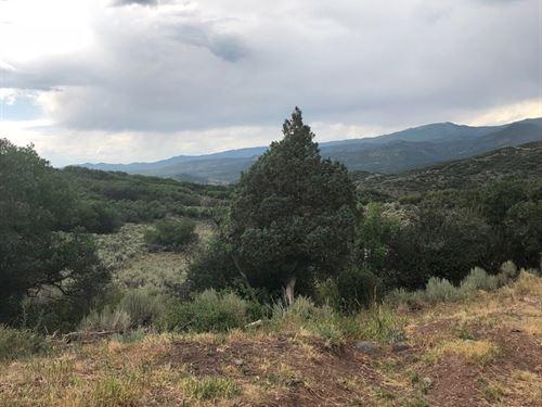 Vacant Acreage That Borders Blm : Collbran : Mesa County : Colorado