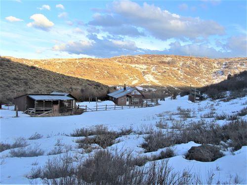 Creekside Acreage That Borders Blm : Collbran : Mesa County : Colorado