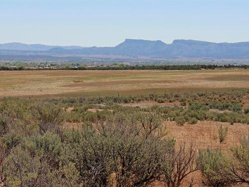 Land SW Colorado, Cortez CO 40 Acre : Cortez : Montezuma County : Colorado