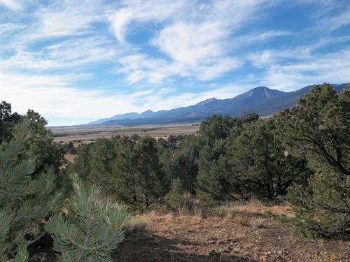 2154 Cowboy Ranch Way Shared Ranch : Cotopaxi : Fremont County : Colorado