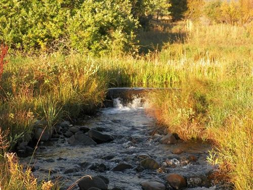 Homestead Property-841 Lake Creek : Cotopaxi : Fremont County : Colorado