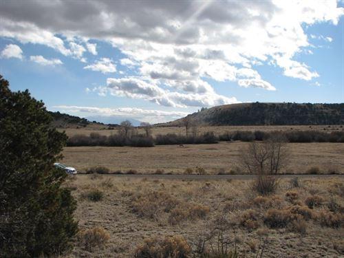 Tree Covered 36+ Acre Parcel San : Del Norte : Rio Grande County : Colorado