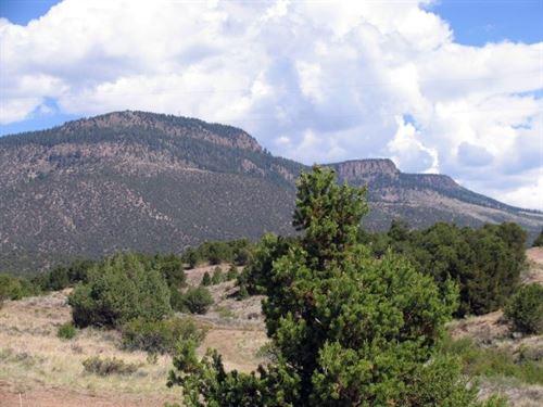 Colorado Lots, Five Contiguous : South Fork : Rio Grande County : Colorado