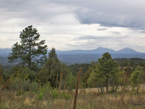 Mountain Acreage Western Views : Trinidad : Las Animas County : Colorado