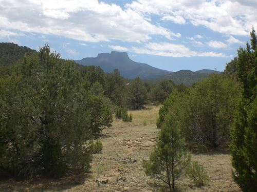 Residential Home Lot Trinidad : Trinidad : Las Animas County : Colorado