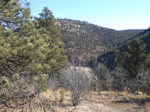 Country Acreage Water Well Weston : Weston : Las Animas County : Colorado