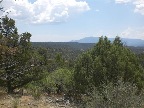 40 Acres Mountain Get-A-Way : Weston : Las Animas County : Colorado
