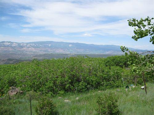 Vacant Land CO That Borders : Mesa : Colorado