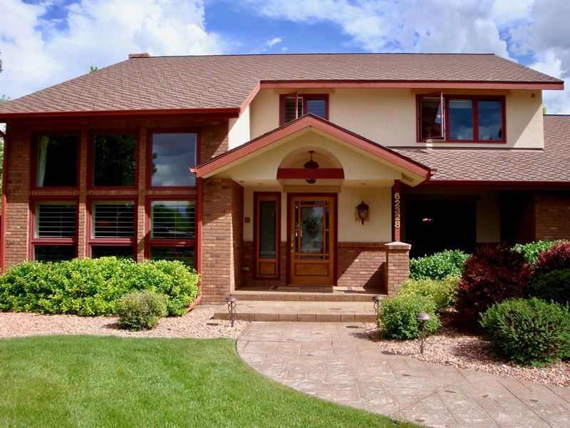 Montrose Colorado Luxury Horse : Montrose : Montrose County : Colorado