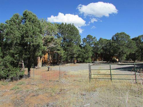 40 Acres Land Ouray County Colorado : Montrose : Ouray County : Colorado