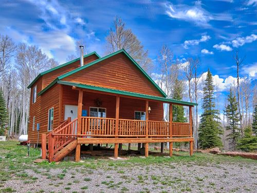 Mountain Property Cabin Western : Montrose : Colorado