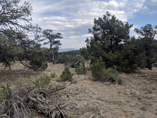 Pristine Lots Panoramic Views : Nathrop : Chaffee County : Colorado