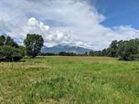Unique Ranch Salida & Buena Vista : Nathrop : Chaffee County : Colorado