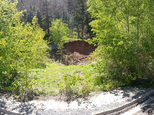 Wooded Lot Colorado Mountain Town : Ouray : Colorado