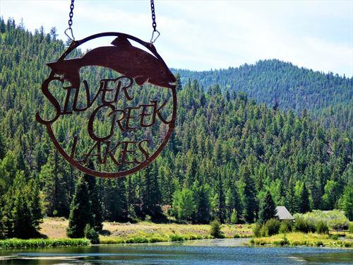 1/2 Acre Lot Exclusive Silver Creek : Poncha Springs : Saguache County : Colorado