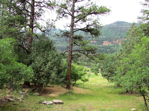 Building Lot Mountain Views Ouray : Ridgway : Ouray County : Colorado