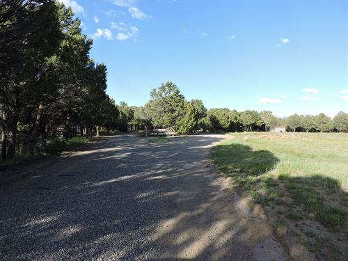 CO Ridgway Mountain Horse Ranch : Ridgway : Ouray County : Colorado