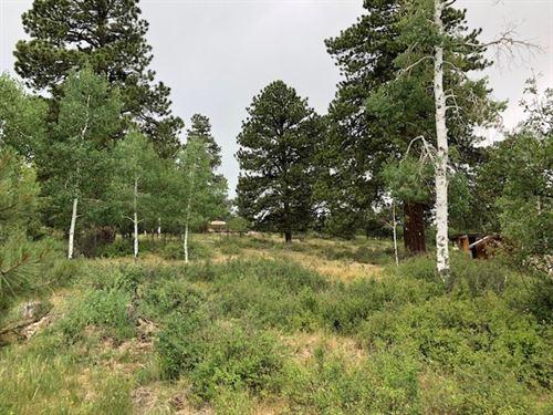 Land Ridgway Colorado Mountain : Ridgway : Ouray County : Colorado