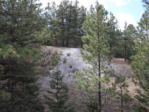 Land Silver Cliff Colorado Custer : Silver Cliff : Custer County : Colorado