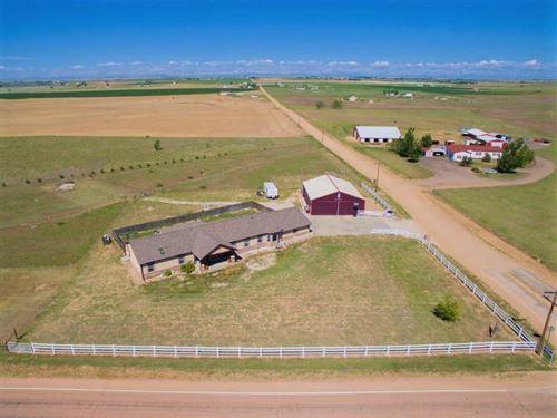 Colorado Hobby Farm, Equine Ranch : Keenesburg : Weld County : Colorado