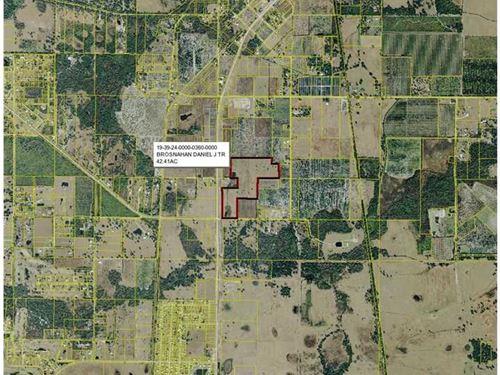 42 Acres Busy Hwy in Arcadia, Fl : Arcadia : Desoto County : Florida