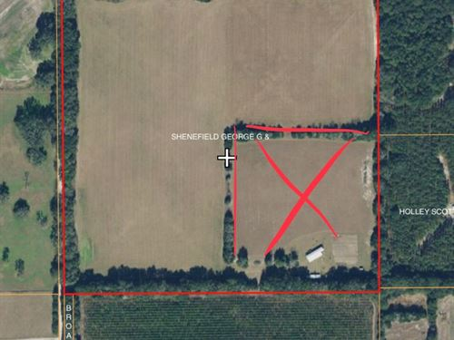 Vacant Land Pasture Bell Florida : Bell : Gilchrist County : Florida