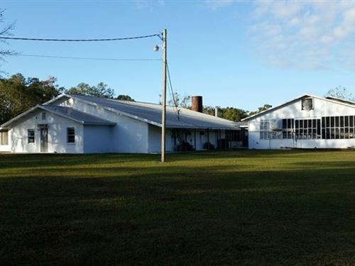Chiefland Florida Commercial : Chiefland : Levy County : Florida