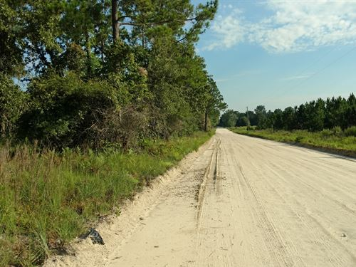 10 Acres In Fort White, Florida : Fort White : Columbia County : Florida