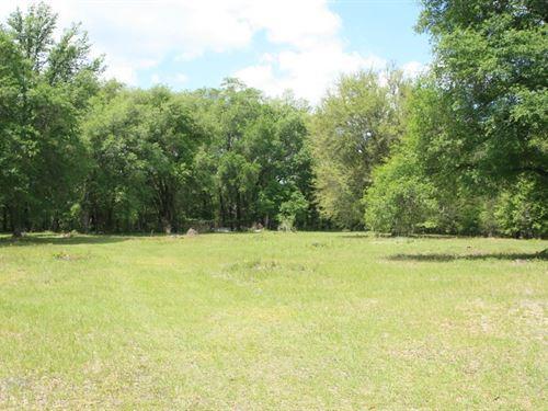 North Florida Land Osceola National : Lake City : Columbia County : Florida