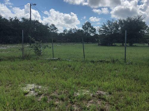 Vacant Land, Ready New Home : Lake Wales : Polk County : Florida