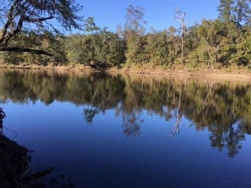 Riverfront Lot on Suwannee River : Mayo : Lafayette County : Florida