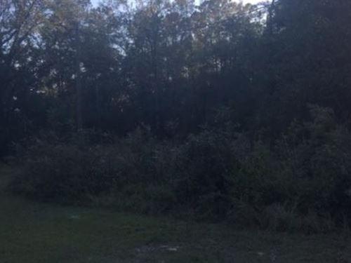 Recreational Lot in Mayo, FL : Mayo : Lafayette County : Florida