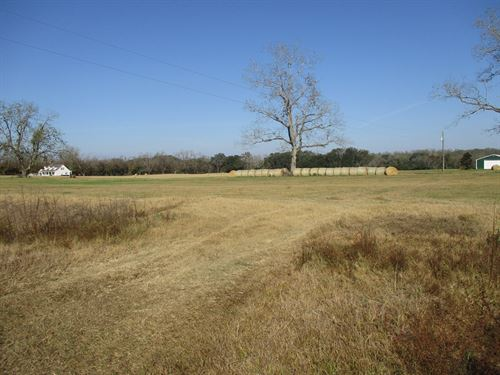 North Florida Lot 10 Acres Land : Monticello : Jefferson County : Florida