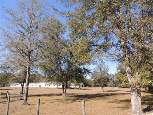 Large Barns, Pasture, Paved Road : O'brien : Suwannee County : Florida