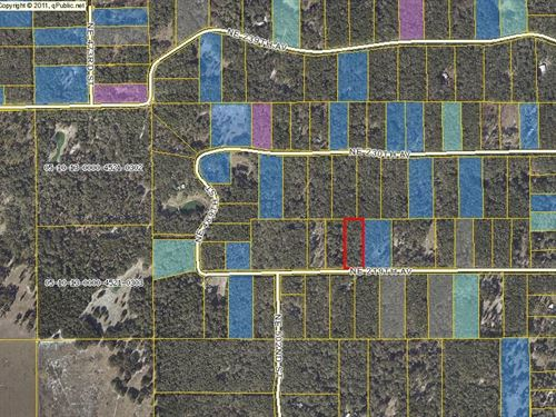 2.85 Wooded Acres : Old Town : Dixie County : Florida
