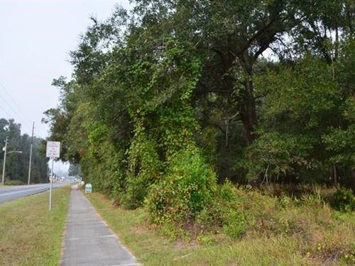High Traffic Area : Trenton : Gilchrist County : Florida