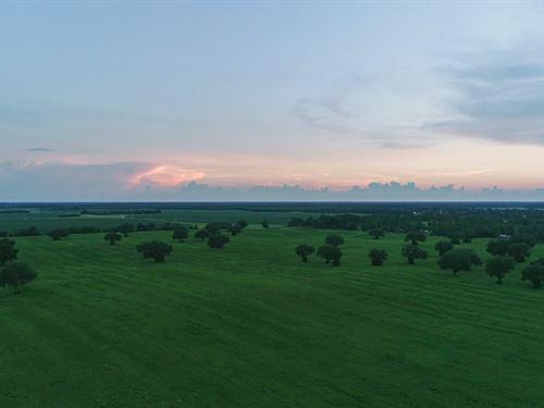 Trenton Fl, Land & Real Estate : Trenton : Gilchrist County : Florida