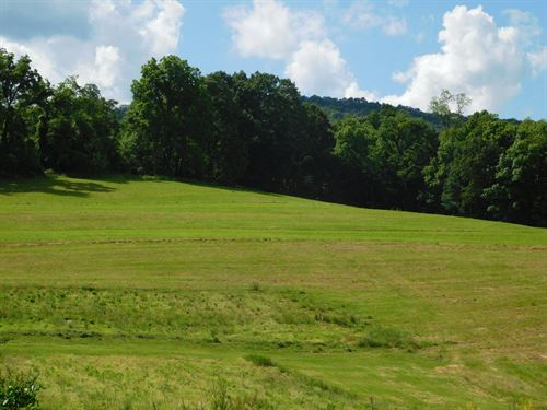 Flintstone MD Land For Sale : Flintstone : Allegany County : Maryland
