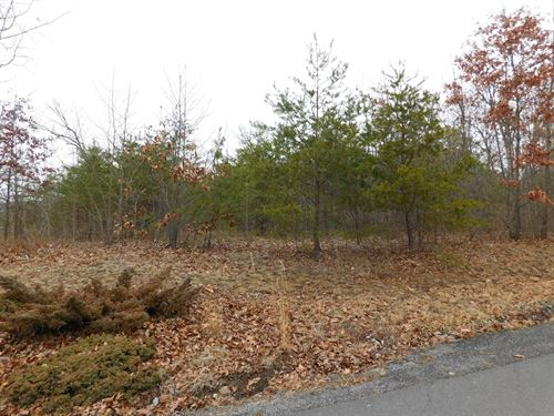 Building Lot in Oldtown MD : Oldtown : Allegany County : Maryland