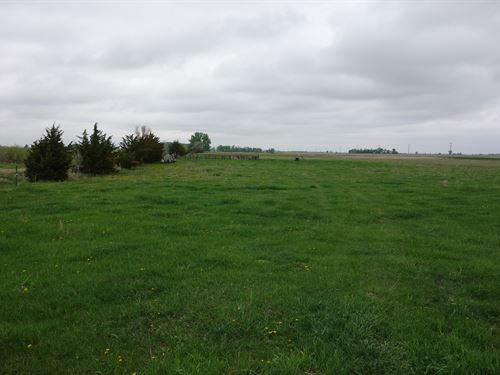 Deuel County Grassland : Revillo : Deuel County : South Dakota