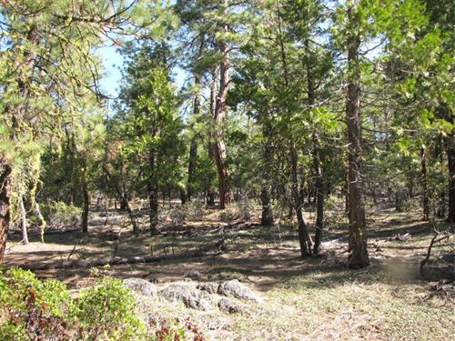 2.33 Acres In Bonanza, OR : Bonanza : Klamath County : Oregon