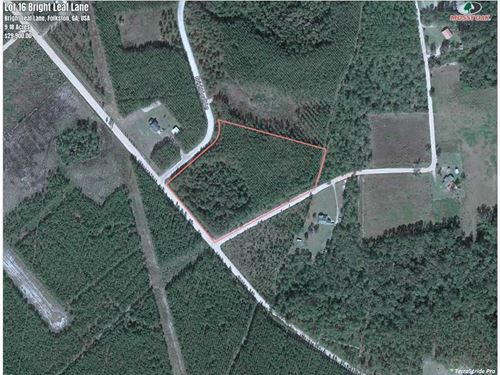 9 Acres Land For Sale in Charlton : Folkston : Charlton County : Georgia