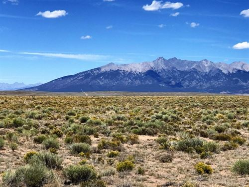 Absolute Land Auction : Alamosa : Colorado