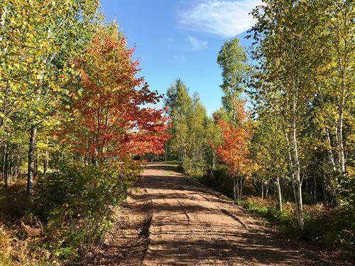 80 Acres Hunting Land/Creek : Cloquet : Saint Louis County : Minnesota