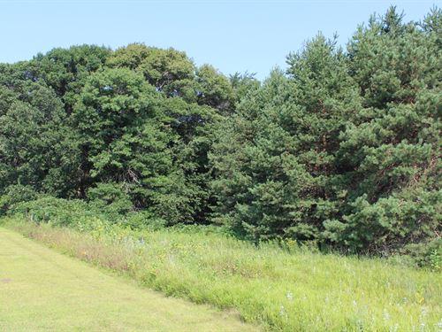 Wooded Acreage For Sale Zimmerman : Zimmerman : Sherburne County : Minnesota