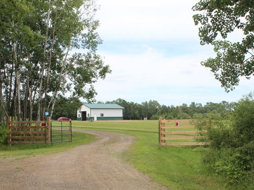 40 Acres Land Mille Lacs County : Milaca : Mille Lacs County : Minnesota