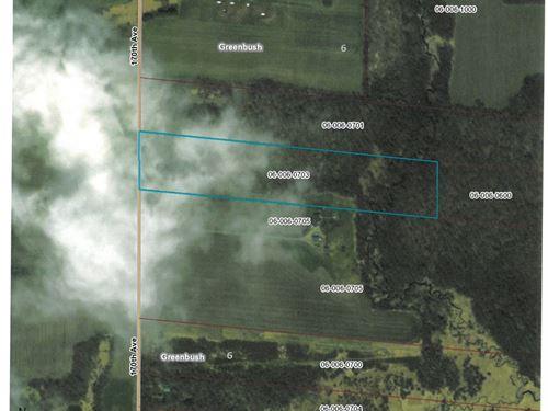 Mille Lacs County Wooded Land : Oak Park : Mille Lacs County : Minnesota