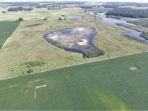Willmar MN 40 Acres Hunting Land : Willmar : Kandiyohi County : Minnesota