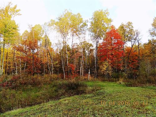 2 Acre Building Lot North Oaks : Sandstone : Pine County : Minnesota